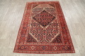 Floral Malayer Mishen Persian Area Rug 4x7 image 18