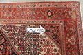 Floral Malayer Mishen Persian Area Rug 4x7 image 14