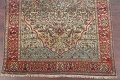 Antique Green Pictorial Kashan Mohtasham Persian Area Rug 4x6 image 5