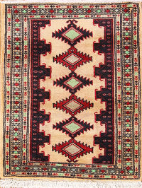 Turkoman Persian Area Rug 2x3