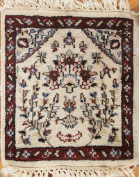 Floral Agra Indian Oriental Square Rug 1x1