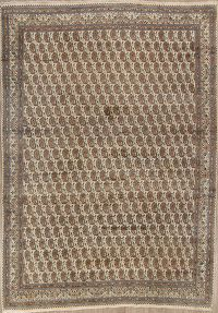 Paisley Kashmar Persian Hand-Knotted Area Rug 9x12