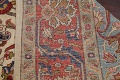 Antique Vegetable Dye Tabriz Persian Hand-Knotted Area Rug Wool 10x13 image 21