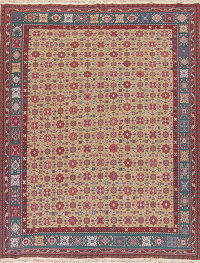 Moss Green Sumak Turkish Oriental Hand-Woven Area Rug Wool 9x12