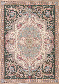 Floral Aubusson Chinese Oriental Area Rug Wool 8x12