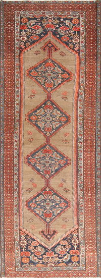 Pre-1900 Antique Vegetable Dye Bakhtiari Persian 3x10 Wool Runner Rug