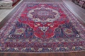 Pre-1900 Vegetable Dye Yazd Antique Persian Hand-Knotted  11x15 Wool Area Rug image 21