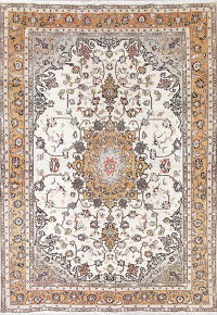 One of a Kind Antique Sarouk Farahan Persian Hand-Knotted 6x9 Wool Area Rug
