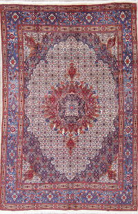 Geometric Medallion Mood Persian Hand-Knotted 7x10 Wool Area Rug