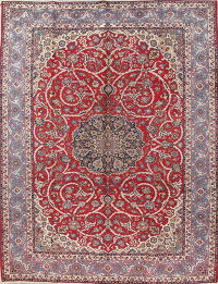Traditional Floral Red Najafabad Persian Hand-Knotted 10x13 Wool Area Rug
