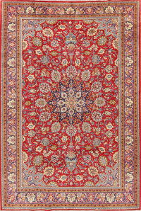 Traditional Floral Red Viss Persian Hand-Knotted 7x11 Wool Area Rug