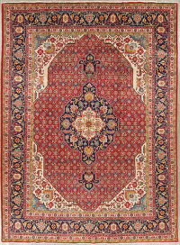 Floral Red Tabriz Persian Hand-Knotted 8x12 Wool Area Rug