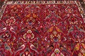 Animal Pictorial Kashkoli Persian Hand-Knotted 7x10 Wool Area Rug image 10