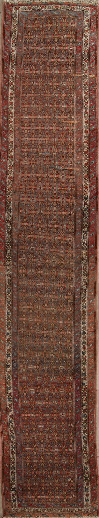Pre-1900 Vegetable Dye Bidjar Persian Hand-Knotted 3x16 Wool Runner Rug