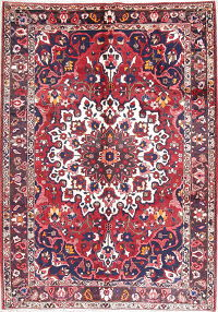 Geometric Red Bakhtiari Persian Hand-Knotted 7x10 Wool Area Rug