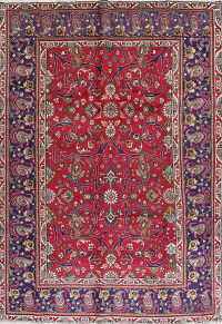 Floral Red Tabriz Persian Hand-Knotted 7x10 Wool Area Rug