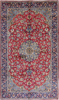 Traditional Floral Najafabad Persian Hand-Knotted 7x10 Wool Area Rug