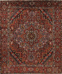 Vegetable Dye Antique Bakhtiari Persian Handmade 11x12 Wool Area Rug