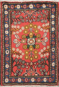 Floral Coral Lilian Persian Hand-Knotted 2x3 Wool Rug