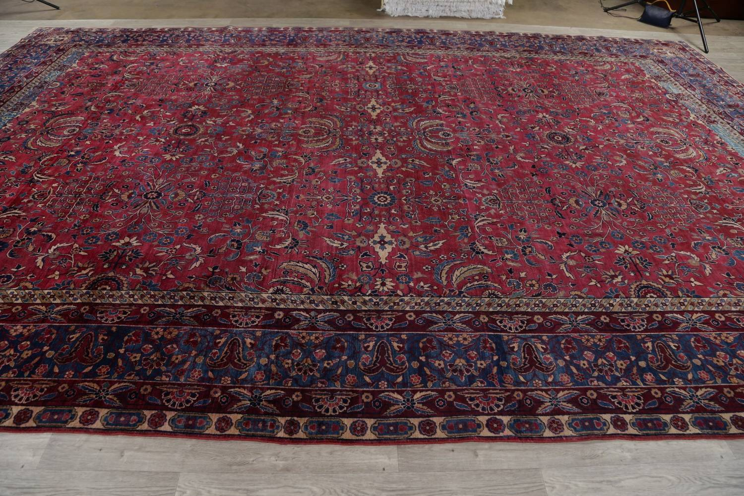Pre-1900 Antique Floral Sultanabad Persian Hand-Knotted 12x18 Wool Rug image 23