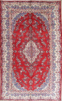 Floral Red Shahbaft Persian Hand-Knotted 10x17 Wool Rug