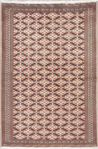 Geometric Turkoman Persian Hand-Knotted 4x6 Wool Area Rug