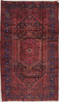 Tribal Geometric Hamedan Persian Hand-Knotted 5x9 Wool Area Rug