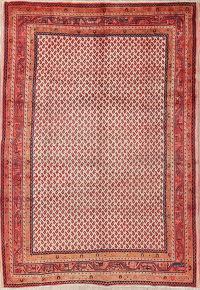 All-Over Boteh Botemir Persian Hand-Knotted 7x10 Wool Area Rug