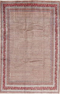 All-Over Boteh Botemir Persian Hand-Knotted 6x10 Wool Area Rug