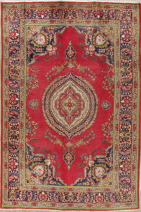 Floral Red Tabriz Persian Hand-Knotted 6x10 Wool Area Rug