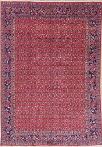 All-Over Red Mahal Persian Hand-Knotted 8x11 Wool Area Rug