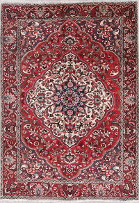 Floral Red Bakhtiari Persian Hand-Knotted 7x10 Wool Area Rug