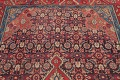 Antique Bakhtiari Persian Hand-Knotted 5x10 Wool Runner Rug image 11