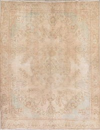 Muted Pale Coral Tabriz Persian Hand-Knotted 9x12 Wool Area Rug