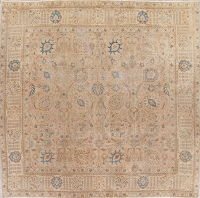 Muted Tabriz Persian Rug Wool Distressed Square 9x9