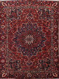 Geometric Red Bakhtiari Persian Hand-Knotted 9x11 Wool Area Rug