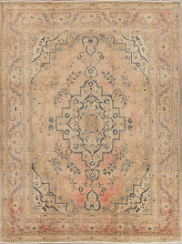 Muted Coral Tabriz Persian Hand-Knotted 9x12 Wool Area Rug