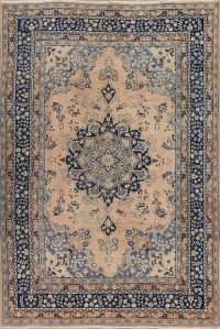 Muted Peach Mashad Persian 6x9 Wool Area Rug