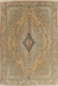Muted Tabriz Persian Hand-Knotted 9x13 Wool Area Rug