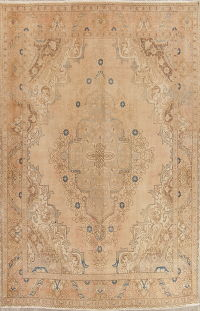 Muted Tabriz Persian Hand-Knotted 10x12 Distressed Area Rug