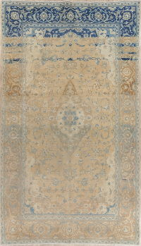 Muted Distressed Kashan Persian Area Rug 6x11