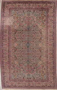 All-Over Floral Karastan Oriental 9x15 Wool Rug