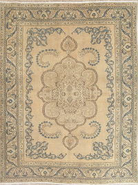 Floral Muted Tabriz Persian Hand-Knotted 9x12 Wool Area Rug
