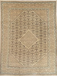 Muted Mahal Persian Hand-Knotted 9x13 Wool Area Rug