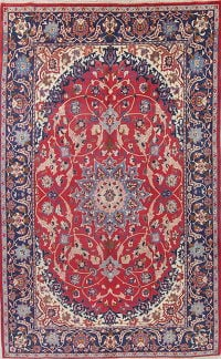 Floral Red Najafabad Persian Hand-Knotted 8x11 Wool Area Rug