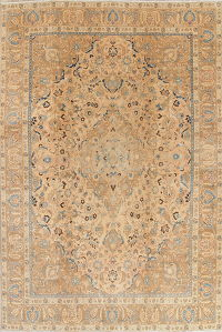 Muted Tabriz Persian Hand-Knotted 10x13 Wool Distressed Area Rug