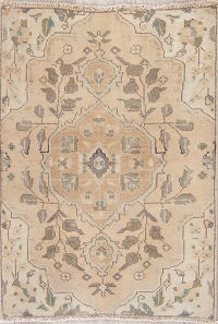 Tabriz Muted Persian Rug 3x4