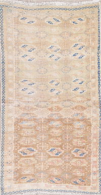 Turkoman Muted Distressed Rug 3x5
