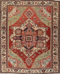 Pre-1900 Vegetable Dye Heriz Persian Rug 11x14