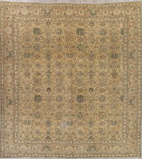 Tabriz Muted Gold Distressed Persian Rug 12x12 Square